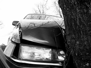 crashed_into_tree